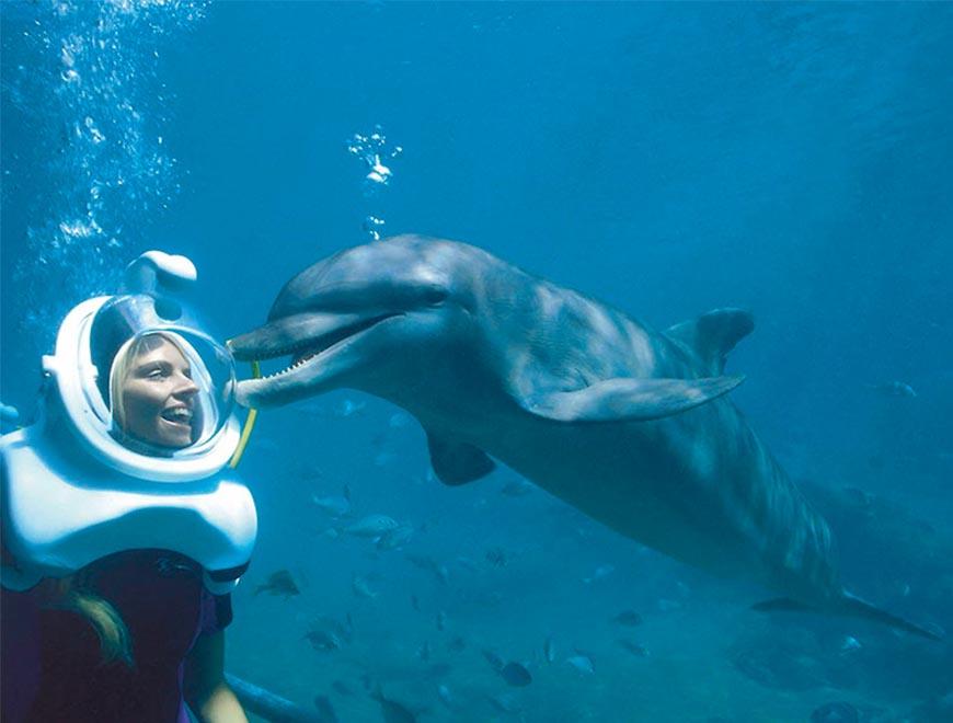 Xelha Delphinus Tour Sea Trek